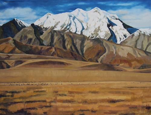 高原系列-雪山草