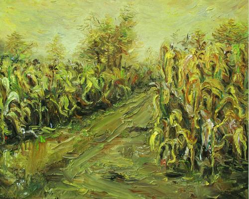 玉米地的疯狂