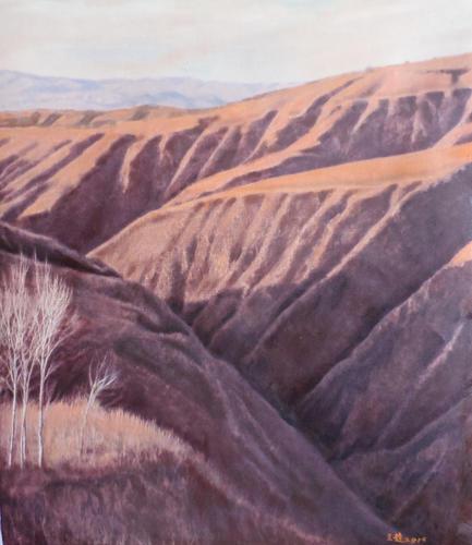 高原系列-黄土地