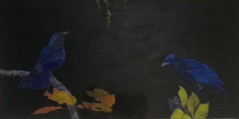 蓝紫色鸟2