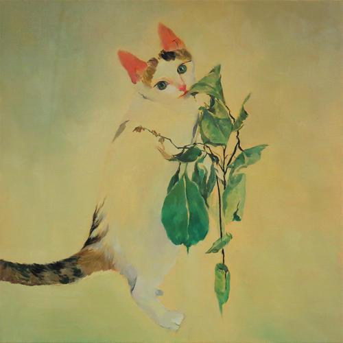 我的猫咪02