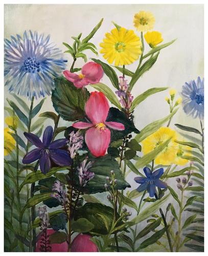 小野花的春天